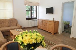 Apartments Ferhadija - фото 3