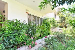 Kosta's Family House, Ferienwohnungen  Athen - big - 48