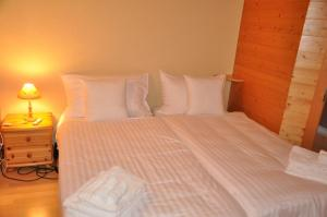 Abricotine 1 - Apartment - Champéry