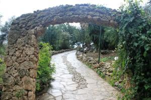 Casas Rurales Los Algarrobales, Üdülőközpontok  El Gastor - big - 76