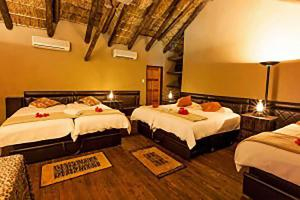 Tuli Game Reserve - Pride Rock Camp