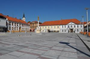 Guesthouse Prenočišče Lukavci, Guest houses  Križevci pri Ljutomeru - big - 8