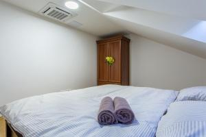 Superior Angel Apartment, Апартаменты  Прага - big - 8