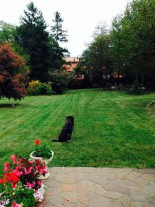 Villa Laly, Bed and breakfasts  Trieste - big - 22