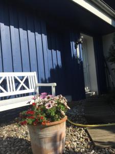 Ferienwohnungen Reetwinkel in Wieck, Ferienwohnungen  Wieck - big - 104