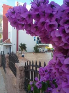Apartments Vila A1