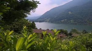 Residence Dei Laghi, Апартаменты  Spinone Al Lago - big - 17