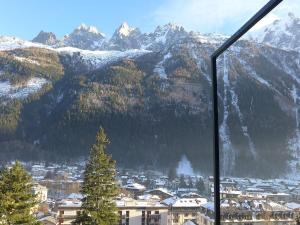 Le Majestic - Apartment - Chamonix