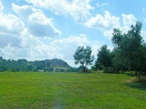 Locazione turistica Il Casale, Case vacanze  Vescovile - big - 1