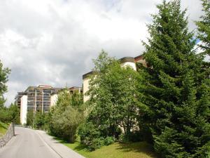Apartment Allod-Park.34, Ferienwohnungen  Davos - big - 5