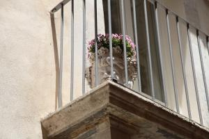 Casa di Anna - MaaM - Ortigia Holiday House, Apartments  Siracusa - big - 12