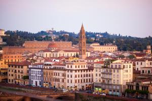 博尔戈奥格尼萨提大街一卧室公寓 (Via Borgo Ognissanti One Bedroom Apartment)