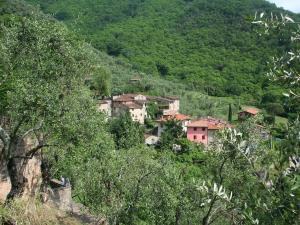 Locazione turistica la Capannella