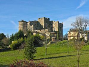 Apartment Chateau Le Castellas Saint Bonnet de Salendrinque