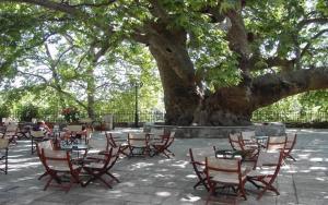 Guesthouse Papachristou, Pensionen  Tsagarada - big - 55