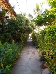 Pousada Ilha Maravilha, Guest houses  Rio de Janeiro - big - 24