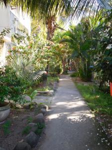 Pousada Ilha Maravilha, Guest houses  Rio de Janeiro - big - 23
