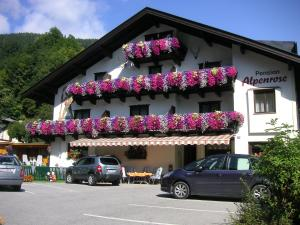 obrázek - Pension Alpenrose