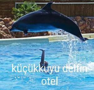 Delfin Hotel Restaurant