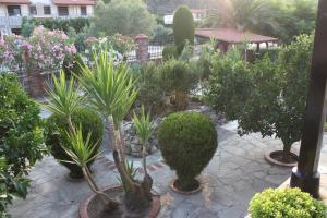 Garden House, Appartamenti  Vourvourou - big - 38