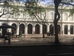 Canavial Terrace, Apartmanok  Funchal - big - 4