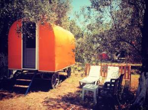 Ozgur Beach Camp