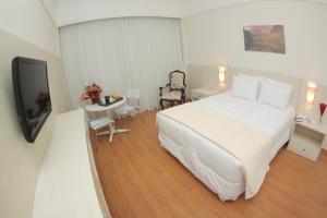 Premier Parc Hotel, Hotel  Juiz de Fora - big - 54