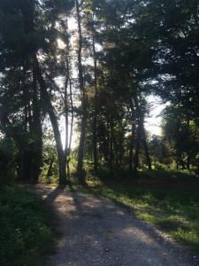 База отдыха На Агрба 32 - фото 4