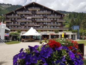 Holidays Groupes Anzère - Accommodation