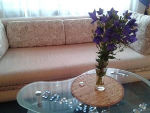 Апартаменты На Кирова 52 - фото 3