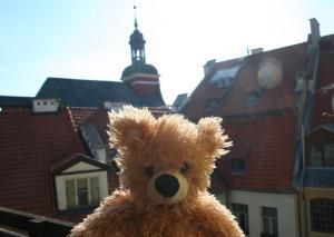 obrázek - Teddy Bear Hostel Riga