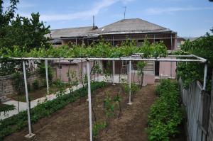 Nukri Guest House, Penziony  Gori - big - 23