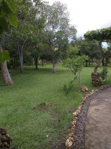 Medori Putih Homestay, Проживание в семье  Улувату - big - 65