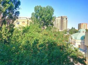 Апартаменты Низами 118 - фото 7