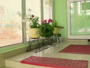 Hostel Gorodok, Hostels  Krasnoyarsk - big - 14