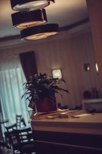 MDK Hotel, Szállodák  Szentpétervár - big - 37