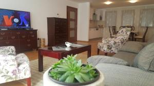 Koturova Homecoming Apartment