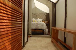 Rhincodon Typus, Hotel  Isola Holbox - big - 13