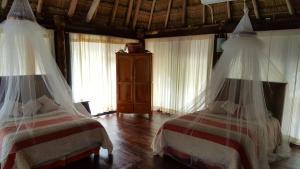 Rhincodon Typus, Hotel  Isola Holbox - big - 10