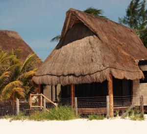 Rhincodon Typus, Hotel  Isola Holbox - big - 9