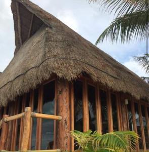 Rhincodon Typus, Hotel  Isola Holbox - big - 49