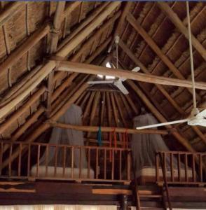 Rhincodon Typus, Hotel  Isola Holbox - big - 7