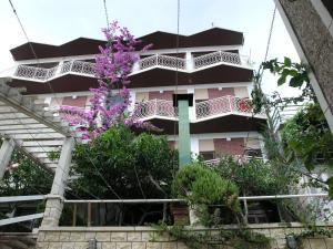 Apartments Dobrila