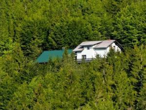 Holiday Home Kuça Kozji Vrh