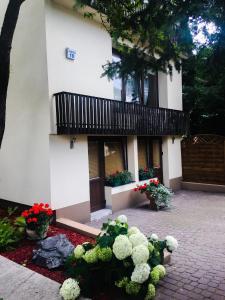 Apartament Asnyka 19
