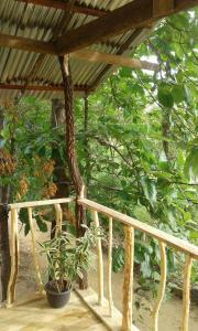 Angry Birds Tree house, Homestays  Habarana - big - 8