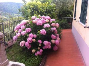 Casa Lia, Ferienwohnungen  Arcola - big - 48