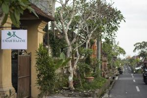 Umah Dajane Guest House, Affittacamere  Ubud - big - 17