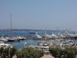 ACCI Port de Cannes