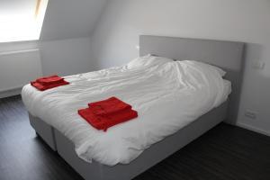 De Roeschaard, Дома для отпуска  Кнокке-Хейст - big - 24